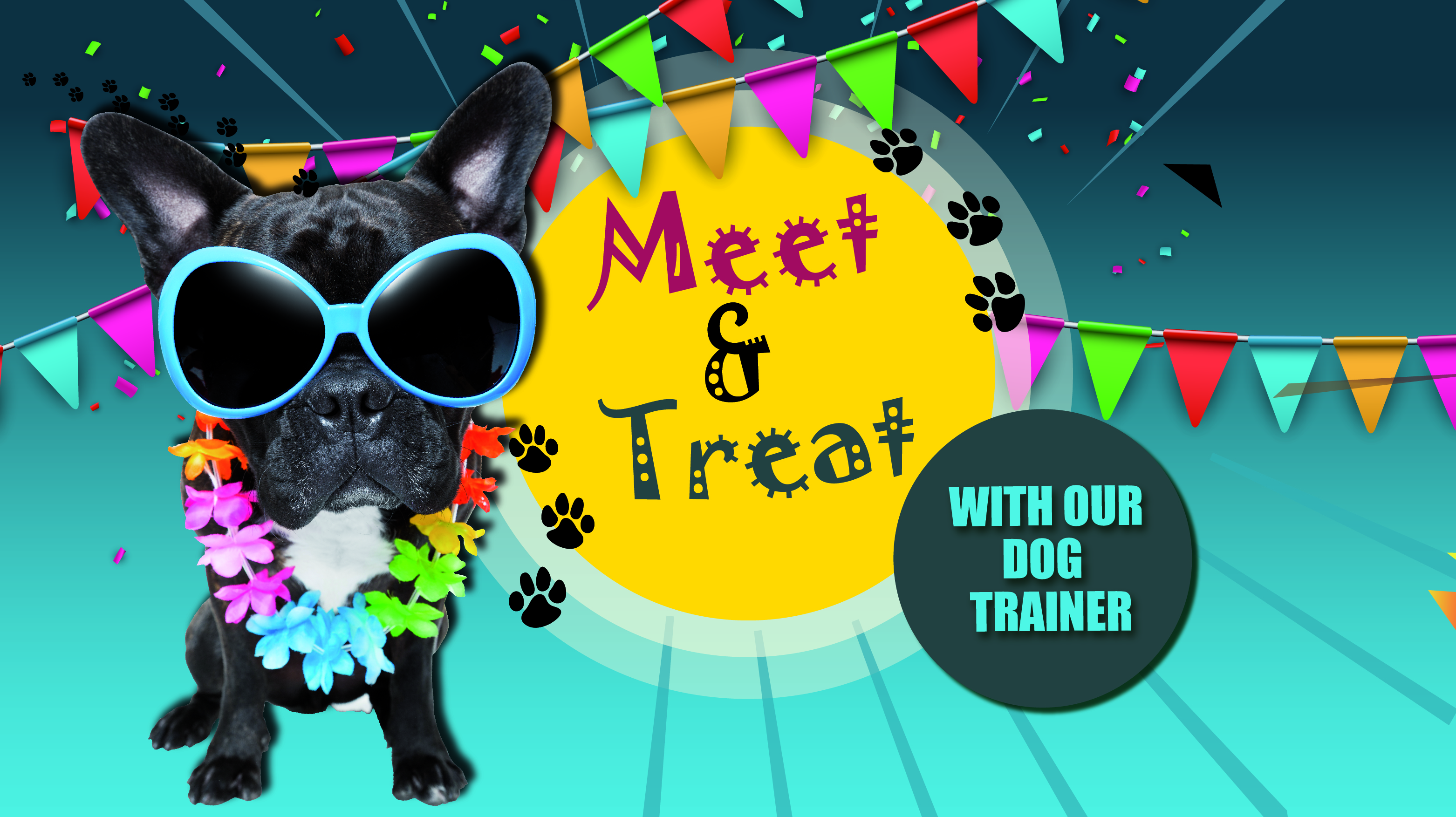 """""""Meet and Treat"""" with our Dog Trainer"""