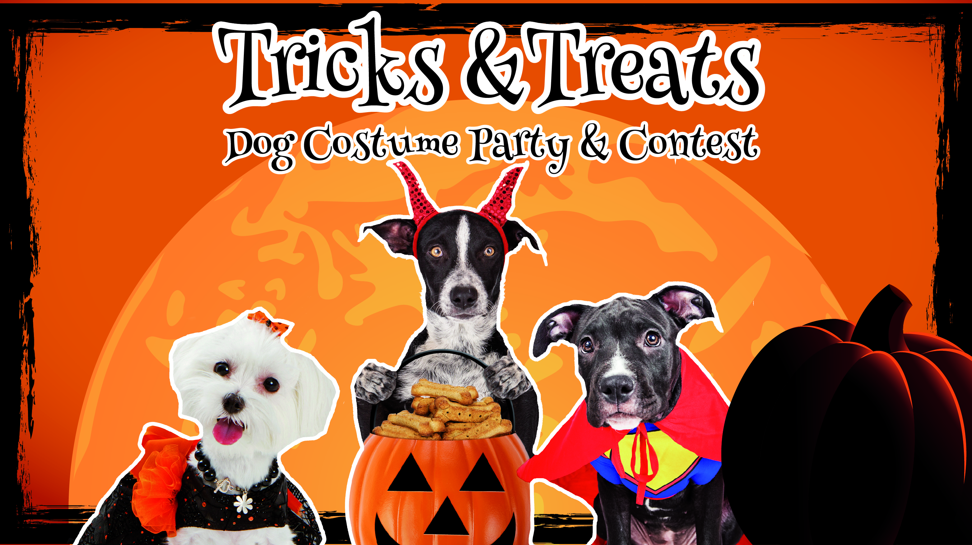 Tricks & Treats: Dog Costume Party & Contest
