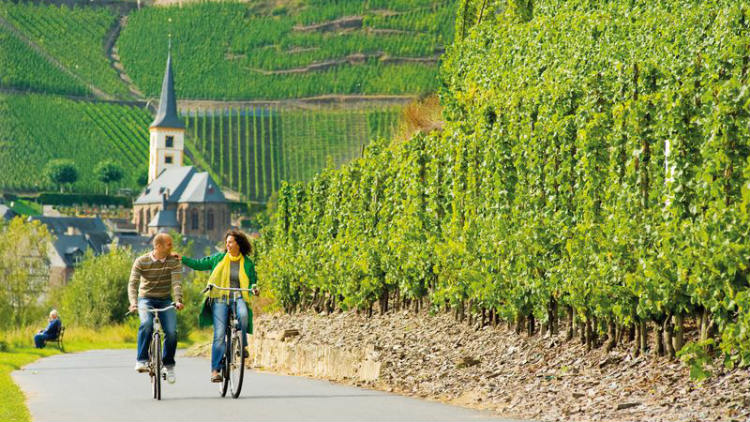 Bike the Mosel Valley